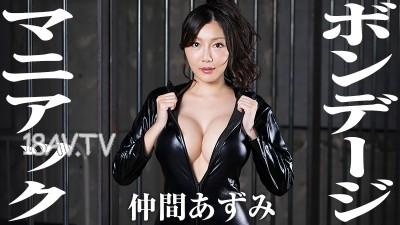 最新heyzo.com 1439 瘋狂 仲間
