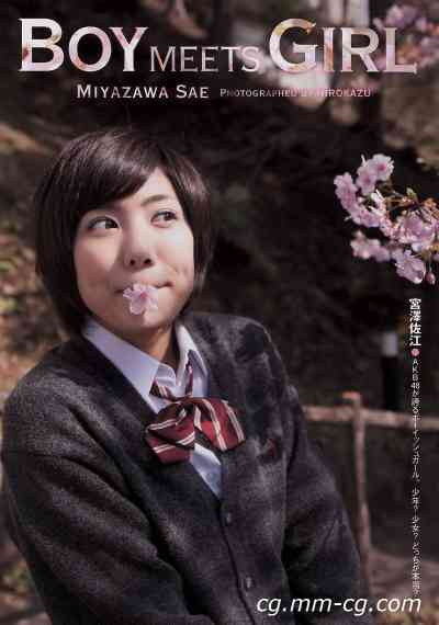 Weekly Playboy 2011 No.17 綾瀬はるか 宮沢佐江 新川優愛 愛衣 etc