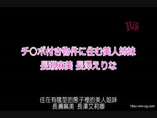 DVAJ-0071-[中文]住在付有肉棒物件裡的美人姊妹 長瀨麻美 長澤衣裡奈