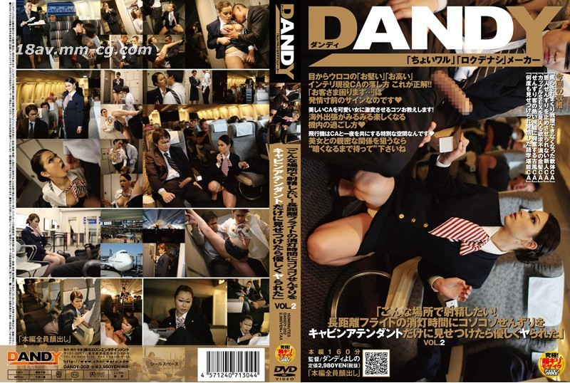 (DANDY)は長距離航海の着火時に客室乗務員によってこっそりと撃たれました。
