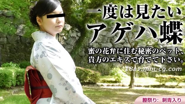 最新のpacopacomama 030316_042着物マッチングPapilioチョウ中井知子